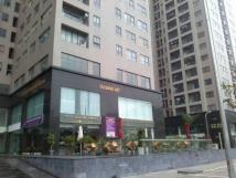 Cho thuê chung cư 102 Trường Chinh Meco, 90m2, đồ cơ bẩn. giá 10 triệu/tháng