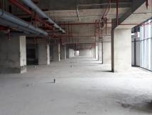 Cho thuê văn phòng, kiốt, sàn thương mại tòa nhà New SKyline Hồ Văn Quán, LH 0968595532
