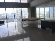 Cho thuê văn phòng đẹp giá rẻ phố Dương Đình Nghệ, quận Cầu Giấy, 115m2, 175m2, 250m2, 315m2...