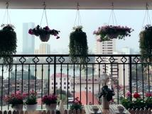 Chính chủ cho thuê căn hộ cao cấp tại chung cư Sky City - 88 Láng Hạ, 112m2, 2PN, giá 16 tr/th