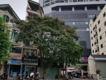 Căn góc, vị trí đẹp, mặt tiền rộng 12m, cho thuê nhà mặt phố Trần Đăng Ninh, diện tích 50m2 x 4T