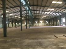 Cho thuê kho xưởng 1.000m2 khung Zamil mới dựng tại Phan Trọng Tuệ, Thanh Trì