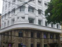 Cho thuê mặt bằng kinh doanh phố Trần Nhân Tông, lô góc, 300m2