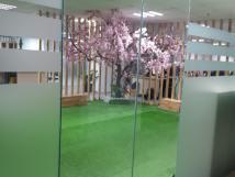 Cho thuê mặt bằng KD, showroom số 352 - 354 Phố Huế, tầng 1 + 2: 500m2, mặt tiền 13.5m, 8 tầng