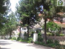 Tư vấn mua bán biệt thự dự án Sunny Garden City Quốc Oai
